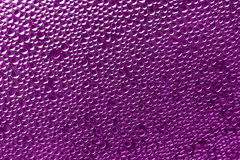 Purple pink background - water drops Stock Photos Stock Image