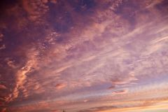 Purple and pink colors in sunset sky Royalty Free Stock Images