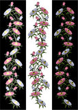 Flowers Illustration Stock Image
