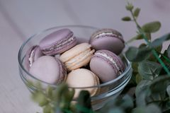 Purple macaroons in the glass plate. stock photo