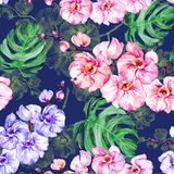 Purple and pink orchid flowers and green monstera leaves on dark blue background. Seamless floral pattern. Watercolor painting. Purple and pink orchid flowers Stock Photos
