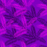 Purple and pink palm seamless vector pattern. Royalty Free Stock Photos