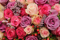 Purple and pink roses wedding arrangement Stock Images