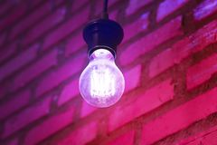 Purple pink tone style with light bulb and brick wall royalty free stock images