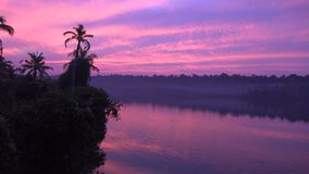 Purple pink warm cloudy evening sunset over palm tree tropical forest in calm lagoon lake on island in Kerala Backwaters stock footage