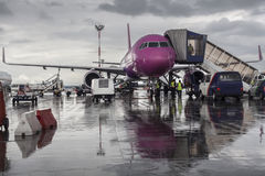 Purple Plane royalty free stock photo