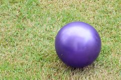 Purple Playground Ball Royalty Free Stock Photo