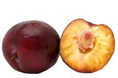 Purple plum. Stock Photography