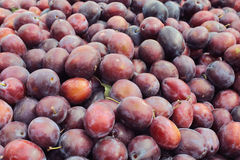 Purple plum background. Plums in the market (plum background)- ready for sale at the Riga central market Stock Photography