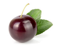 Purple plum with leaves isolated on white background Stock Photo