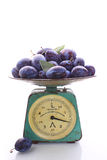 Purple plum. In the old scales on a white background stock photos