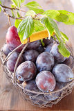 Purple plums in a basket Stock Photo