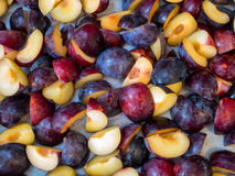 Purple plums cut in quarters Royalty Free Stock Photography