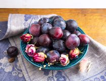 Purple plums in a green plate Stock Images