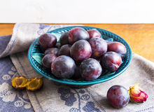 Purple plums in a green plate Stock Image