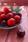 Purple plums with leaves Stock Photography