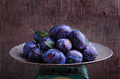 Purple plums in a metal bow. L on a dark background stock image