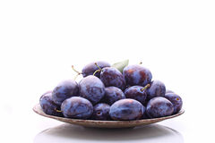 Purple plums. In a metal bowl on a white background royalty free stock image