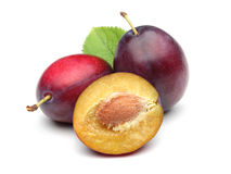 Purple Plums Royalty Free Stock Images