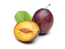Purple Plums Stock Photography