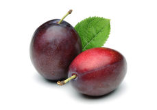 Purple Plums Royalty Free Stock Photography