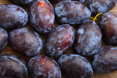 Purple plums. On a wood background stock images
