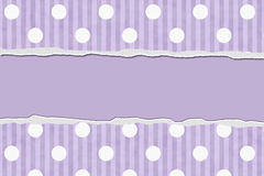 Purple Polka Dot and Striped Torn Background for your message or Stock Image