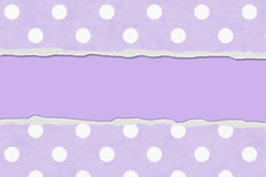 Purple Polka Dot Torn Background for your message or invitation. With copy-space in the middle royalty free stock photo