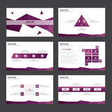 Purple polygon Abstract presentation template Infographic elements flat design set for brochure flyer leaflet marketing Royalty Free Stock Images
