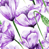Purple poppy watercolor pattern Royalty Free Stock Images