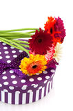 Purple present with flowers Royalty Free Stock Photo