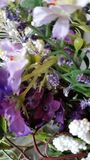Purple Purple. Purple bouquet of flowers Stock Photography