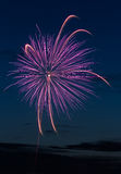 Purple Pyrotechnic Royalty Free Stock Photos