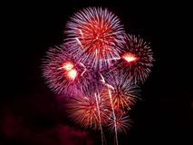 Purple Red White and Orange Fireworks Display Royalty Free Stock Image