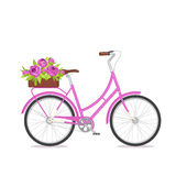 Purple retro bicycle with bouquet in floral box on trunk for wedding, congatulation banner, invite, card Stock Image