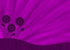 Purple retro flower background Stock Photo