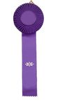 Purple ribbon. A purple ribbon isolated on white Royalty Free Stock Photos