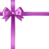Purple ribbon bow Stock Image