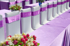 Purple ribbon  chair Stock Image