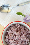 The purple rice is a popular health food. Royalty Free Stock Photos