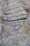 The purple rock Stock Image