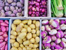 Purple root vegetable. Fresh purple root vegetables at a French farmers' market Stock Photo