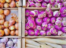 Purple root vegetable. Fresh purple root vegetables at a French farmers' market Stock Images