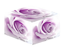 Purple Rose Box. Purple/violet rose box designed in Photoshop. Would make a great wedding card or other romantic gift card Royalty Free Stock Photo