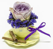 Purple rose in a tea cup Royalty Free Stock Photography