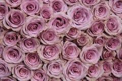 Purple rose wedding arrangement Stock Image