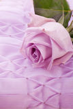 Purple rose for wedding Royalty Free Stock Photo