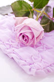 Purple rose for wedding love Stock Photo