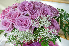 Purple Roses. An arrangement of purple roses and baby's breath royalty free stock photography
