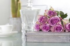 Purple Roses Bouquet Royalty Free Stock Images